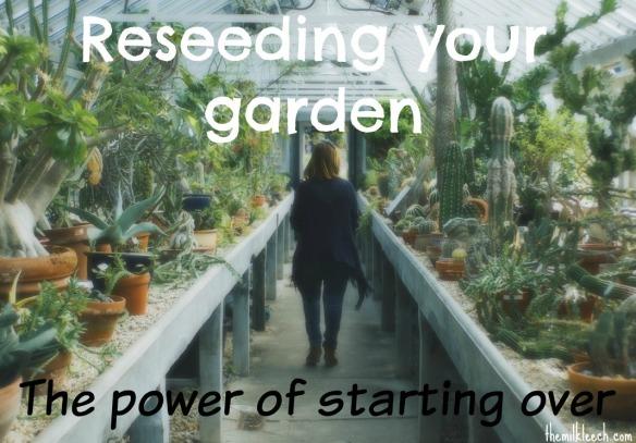 Reseeding your garden